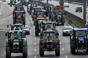 Trung Quốc thâu tóm đất nông nghiệp: Nỗi đau không riêng ai