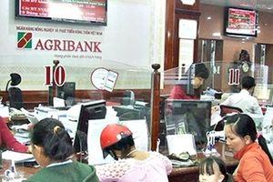 Agribank là nhà tài trợ kim cương tại Diễn đàn kinh tế Việt Nam