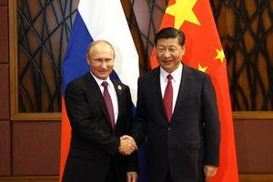 Ông Vladimir Putin gặp Chủ tịch Tập Cận Bình, nhấn mạnh 'quan hệ mẫu mực' Nga-Trung