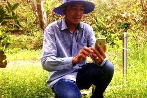 Nông dân 4.0 ngồi rung đùi, 'ôm' điện thoại và thu lợi nhuận khủng