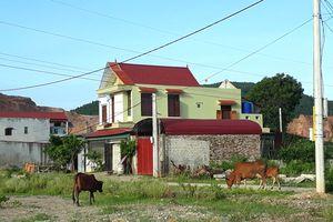 Bí thư xã Hà Ninh bị cấm đi khỏi nơi cư trú