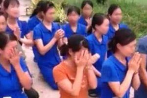 Vụ cô giáo quỳ khóc xin tiếp tục dạy: Chủ tịch thị trấn nghi có sự xúi giục