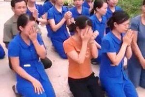 Vụ giáo viên mầm non quỳ lạy tại Nghệ An: Lãnh đạo địa phương nói gì?