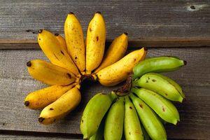 Chuối tiêu - Từ lá đến quả đều là vị thuốc hay