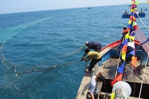 Tác nghiệp bên ngư dân