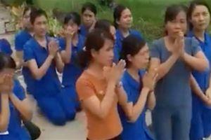 Cô giáo quỳ gối xin dạy: Công an xác minh dàn dựng