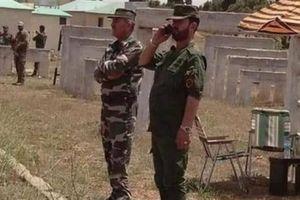 Phớt lờ Mỹ, Lực lượng Tiger lâm trận Dara'a