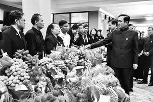 Thái Lan cân nhắc trả đũa Indonesia vụ cấm nhập hoa quả