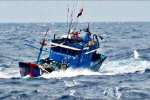 Chìm tàu ở Cà Mau, một ngư phủ mất tích