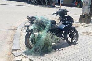 CSGT dùng súng bắn lưới bắt người vi phạm giao thông mang 'vũ khí nóng'