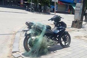Thanh Hóa: Cảnh sát bắn lưới bắt người vi phạm giao thông mang theo súng