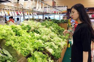 Người tiêu dùng hoang mang giữa 'rừng' rau hữu cơ thật - giả