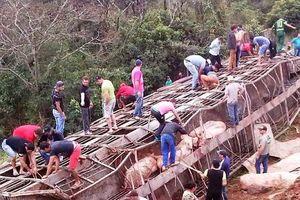 Xe chở hơn 100 con lợn bị lật, người dân đua nhau đến hôi của