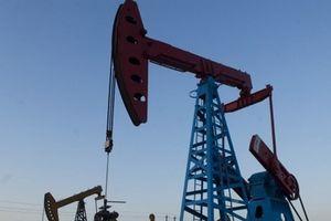 OPEC và bài toán nan giải về kiểm soát giá dầu
