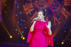 Đinh Hiền Anh say đắm trong đêm nhạc 'Trở về' và tiết lộ dự án âm nhạc mới cùng Tú Dưa
