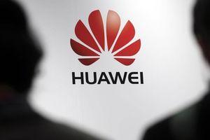 'Phải điều tra sự ảnh hưởng của Huawei đối với các trường đại học Mỹ'