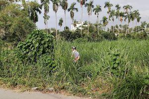 Phát hiện thi thể người đàn ông đang phân hủy trong bãi cỏ
