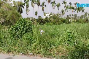 Đang cắt cỏ phải bỏ chạy vì phát hiện xác người đang phân hủy
