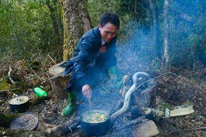 Nhật ký giữa rừng Yên Bái