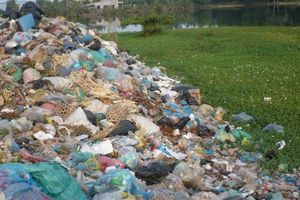 Báo động rác thải nhựa
