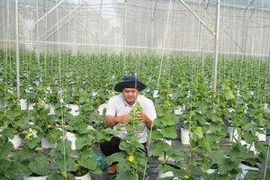 Sóc Trăng: Thúc đẩy nông nghiệp công nghệ cao