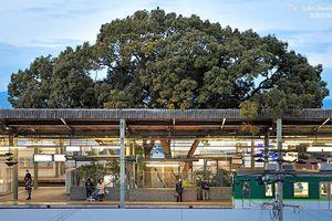 Ga Kayashima ở Nhật - nơi kiến trúc và thiên nhiên hợp nhất
