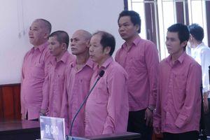 Hoãn phiên tòa xét xử vụ phá hơn 64 ha rừng ở Bình Định