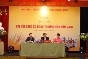Đại hội Habeco: 'Chưa có hợp đồng nào về dự án tại 183 Hoàng Hoa Thám'
