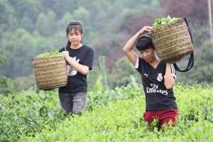 Đổi đời nhờ nông sản
