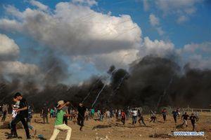 Biểu tình bùng phát ở Dải Gaza làm 2 người chết, hơn 300 người bị thương