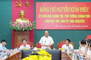 Thủ tướng: Cần đưa chè Thái Nguyên tham gia chuỗi giá trị toàn cầu