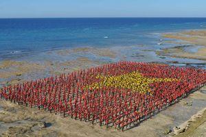 3.000 người hát Quốc ca, tạo hình lá cờ Tổ quốc trên bãi biển