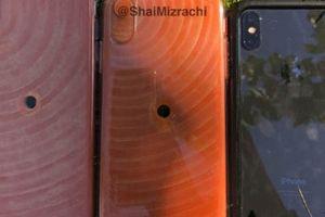 'Hình nộm' iPhone X Plus và iPhone 9 bất ngờ xuất hiện