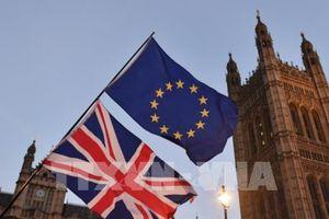 Vấn đề Brexit: Lựa chọn giữa 'cứng' và 'mềm' (Phần 2)