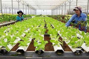 10 nông dân nhận giải 'Tôi là nông dân 4.0'