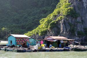 Hải Phòng: Lại 'nóng' vấn đề môi trường trên vịnh Cát Bà