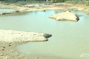 Nghệ An: Hồ đập cạn kiệt nước, gần 23 nghìn ha ruộng nứt nẻ