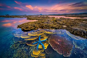'Sắc màu của biển' giành giải Nhất cuộc thi ảnh nghệ thuật du lịch toàn quốc