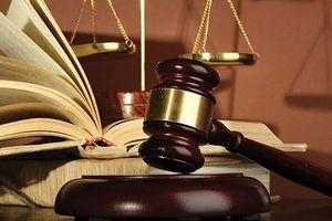 TP Hồ Chí Minh: Thẩm phán bị tố gian dối, cản trở luật sư đọc hồ sơ