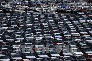 Các hãng chế tạo ô tô 'tranh thủ' xuất khẩu sang Mỹ
