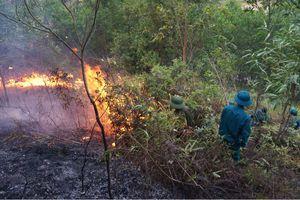 Hỏa hoạn thiêu rụi khoảng 40 ha rừng ở Thanh Hóa
