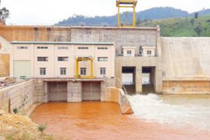 Kon Tum: 8 thủy điện nợ hàng tỷ tiền dịch vụ môi trường rừng