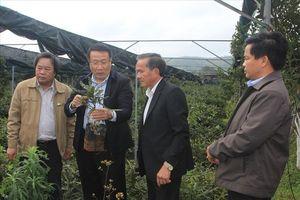 Kỷ niệm 50 năm chiến thắng Khe Sanh: Đã thấy bóng dáng của một 'huyện miền núi kiểu mẫu'