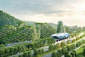 Trung Quốc sẽ xây dựng hàng trăm 'thành phố rừng' vào 2025