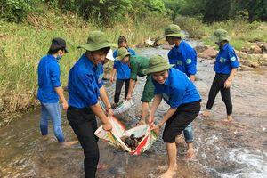 Thanh niên tình nguyện 'Chung tay xây dựng nông thôn mới'