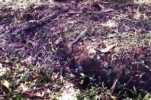Mời cơ quan địa chất khảo sát việc núi Goi Ra Hách xuất hiện hàng chục vết nứt