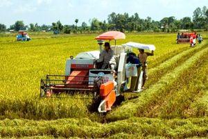 Hiệu quả từ cơ giới hóa sản xuất nông nghiệp