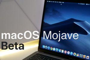 Đã có thể tải về và cài đặt macOS Mojave Public Beta 2
