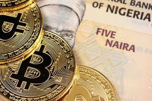 Bitcoin mất giá 66% nhưng nhiều người vẫn vẫn muốn chấp nhận đồng tiền này