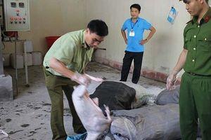 Mua dê không rõ nguồn gốc ở Sơn La về Ninh Bình tiêu thụ